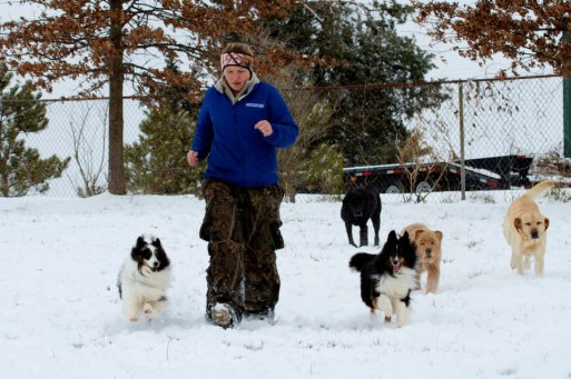 This is a great group of dogs, but they are all different. Notice the two Shelties in the front. They were both raised in the same house, under the same circumstances, but they couldn't be more different. The female on my right is so outgoing and loves everyone, the male on my left, only likes certain people. The male, will however do any sort of agility that you put in front of him and is a heck of a worker. He'll let a little kid drag him around the agility course for hours on end and never complain. The female likes to jump and go, but not with the same love that the male shows. Both are equally loved by their owner, because she understands their differences and accepts what some people would consider flaws.