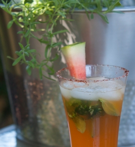 Watermelon Cocktail 21