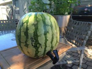 Display your watermelon keg on the table, or raise it up on a stand. It's your choice.